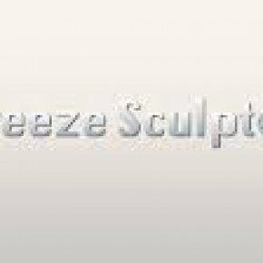 Salon kosmetyczny VENUS - Kriolipoliza FREEZE SCULPTOR ®